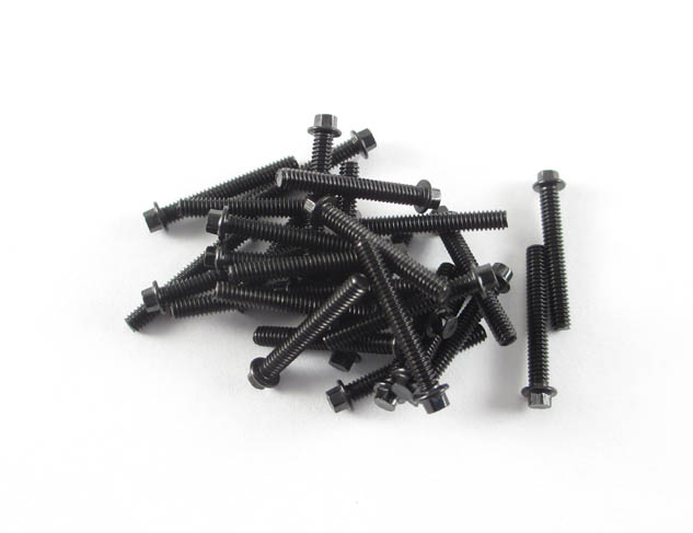 M2 x 14mm Scale Hex Bolts (30) Black